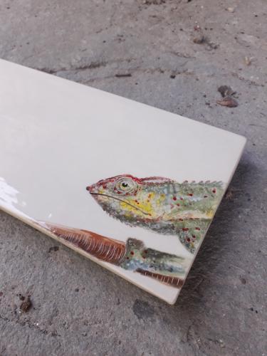 Chamaleon tray