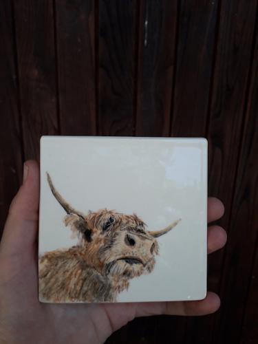 Azulejo vaca