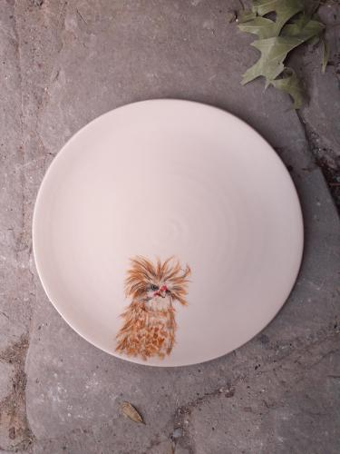 Padovana plate