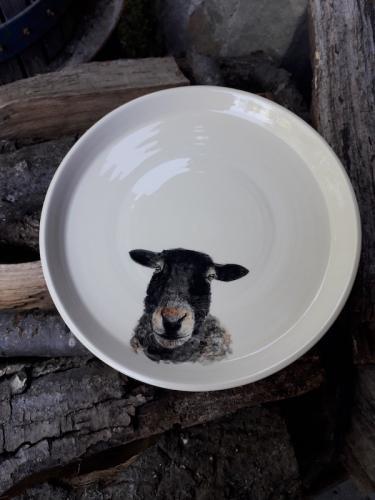 piatto pecora