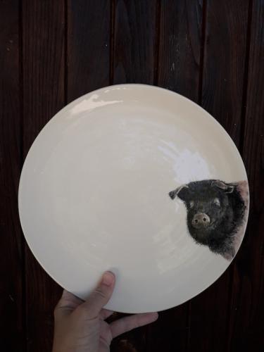 pig plate
