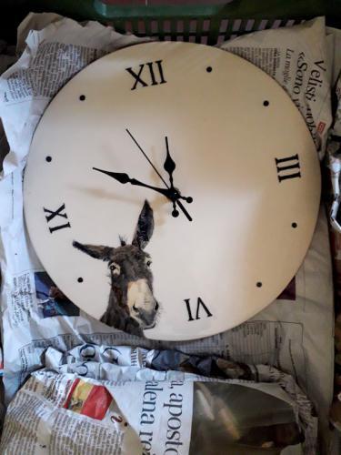Reloj burro